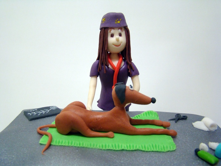 veterinaria 2